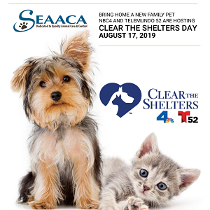 Clear the Shelters 2019 flyer